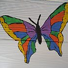 Rainbow Butterfly by Sarita Andres