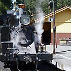 Puffing Billy # 9 by Virginia McGowan