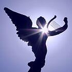 Heaven's Song by shutterbug2010
