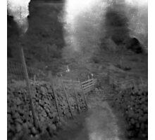 Flares Photographic Print
