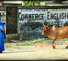 Commerce English by Catherine Ames