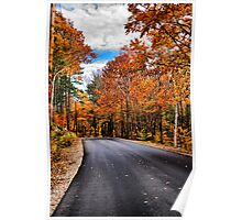 NH Autumn Road 1 Poster