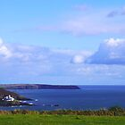 Roche's Point Lighthouse, Cork Harbour, Ireland by Pat O Callaghan