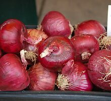 onions by scott staley