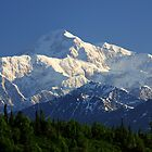 Mount McKinley / Denali ~ Alaska by Barbara Burkhardt