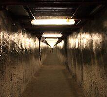 The Corridor by Alex Boros