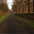 Church Lane, Harewood by WatscapePhoto