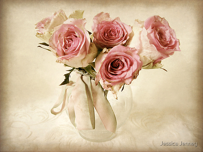 Delicate Rose by Jessica Jenney