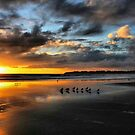 Sunset at Stinson by Barbara  Brown