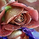 """""""Tapestry of Romance ..."""" by Rosehaven"""