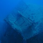 Aloara Wreck at Hideaway by Matt-Dowse
