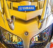 Yamaha Gold by Diane E. Berry