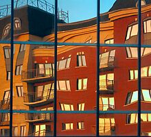 Reflection le Selection. by Elisabeth van Eyken