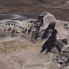Painted Desert by Frank Romeo