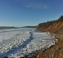 A Foamy Frothy Sea by Randall Scholten