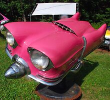 """Little Pink"" by John Schneider"
