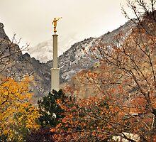 Provo Temple - Late Autumn by Ryan Houston