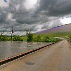 Murrumbidgee River # 2 by GailD