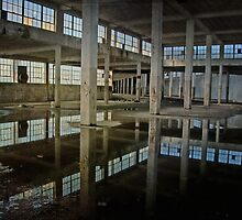 Indoor Cement Pond by MClementReilly