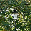 Lamp and Turning Leaves by lendale