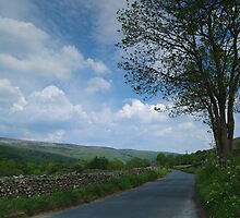 The Road to Gunnerside by WatscapePhoto
