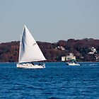 Rome Point- Sailboat by prpltrtl8