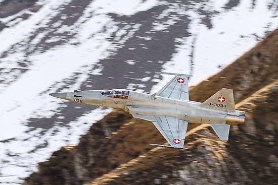 F-5E Tiger - Swiss Air Force  by Ted Lansing