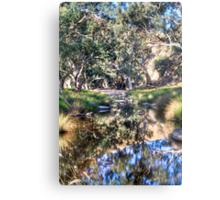 Marne reflections Metal Print