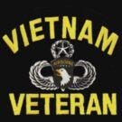 101st Airborne Vietnam Veteran (sm) by Walter Colvin