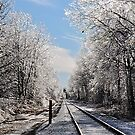 Iced Rails by main1