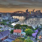 Jackarandah Dawn - Sydney Harbour, Sydney Australia by Philip Johnson