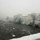 Snow storm on the Talvera River, Bolzano/Bozen, Italy by L Lee McIntyre