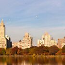 Fall Shoreline: Manhattan's Upper West Side by Dave Bledsoe