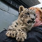 Nina, 17 weeks old Snow Leopard by Elaine123