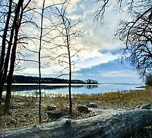 Lake shore at Cap St-Jacques by Sylvain Dumas