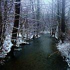 Snowy Creek by fotoflossy