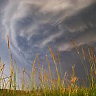 Turbulent skies near Kyogle, NSW by Dave Ellem