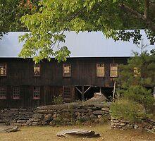Old Sawmill by Anne Smyth