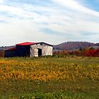 Fall Barn by searchlight