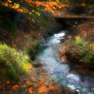 Waterworks Valley, Jersey by Nicky Stewart