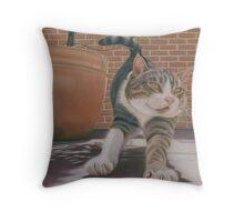 Str-e-e-e-tch Throw Pillow