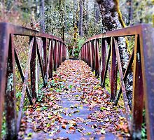 Fall bridge - Buckhead Nature Trail by AmyBuchmeier