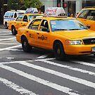 New York Taxis by Paul Finnegan