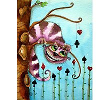 The Cheshire Cat - Lazy days Photographic Print