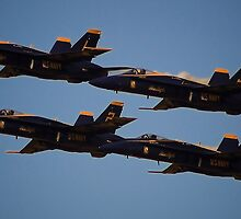 Blue Angels by Phillip  Judy