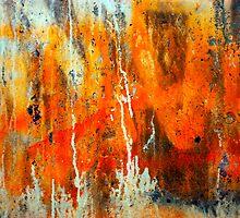 Tangerine Sky by DebraLee Wiseberg