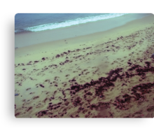 the place at the sea where my tears stained my lens Canvas Print