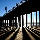 In The Light, Seeing The Shadows (Color) by Cleber Photography Design