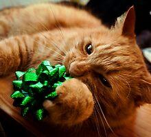 Merry Xmas Cat by SGPascoe