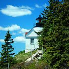 Different POV of Bass Cove Light by RoyceRocks